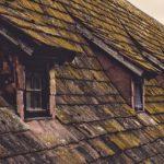 mossa på taket